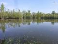 Mura Carp Lakes M1