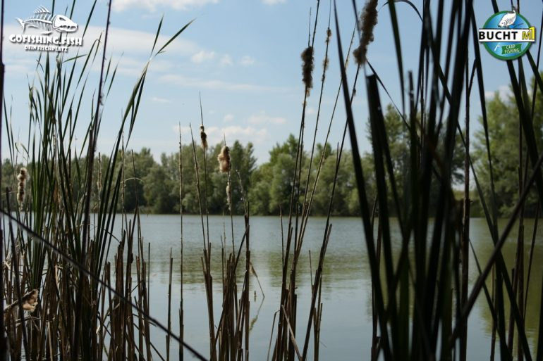 Bucht M1 – Platz 9 Chris Bienert gofishing 07