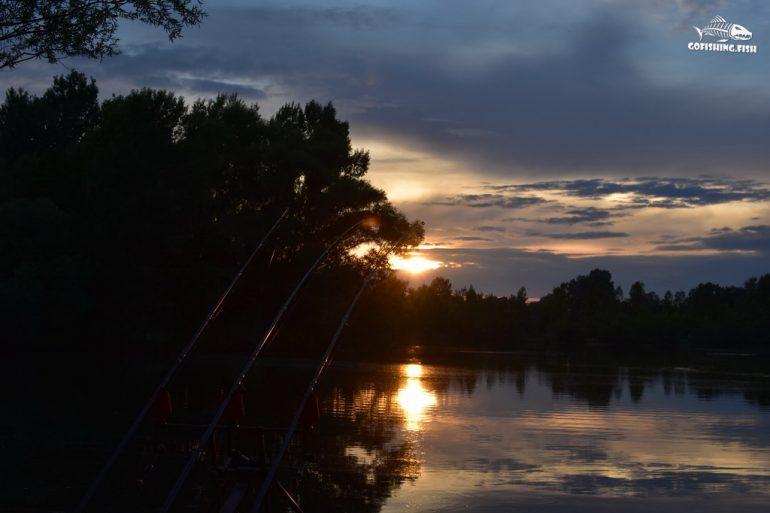 Mura Carp Lakes gofishing.fish