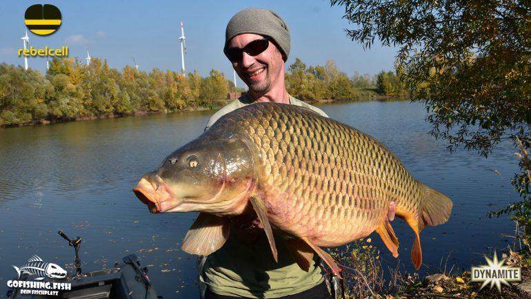 Gofishing – Dein Fischplatz – Bucht M1