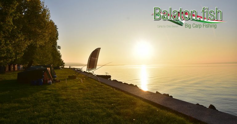 Balaton-Carp-Fishing-by-Chris-Bienert-Balatonszepezd-FB