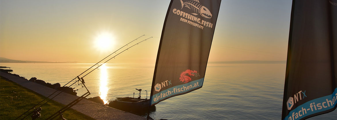 Balaton-Carp-Fishing-by-Chris-Bienert-Balatonszepezd-gofishing-sonnenaufgang