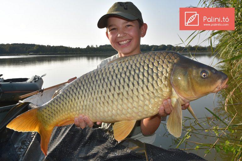 Fischen am Palinit Tó auf 23ha 7 Stege mit Hütte direkt am Wasser in Ungarn.